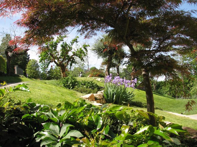 Realizzazione giardini e aiuole fumagalli giulio for Esempi di giardini