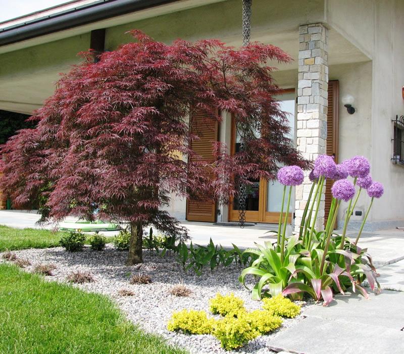 Realizzazione giardini e aiuole fumagalli giulio for Giardini e aiuole