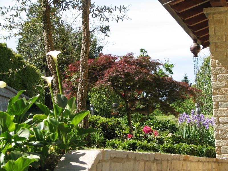 I nostri lavori per creazione giardini bordure miste for Cespugli giardino