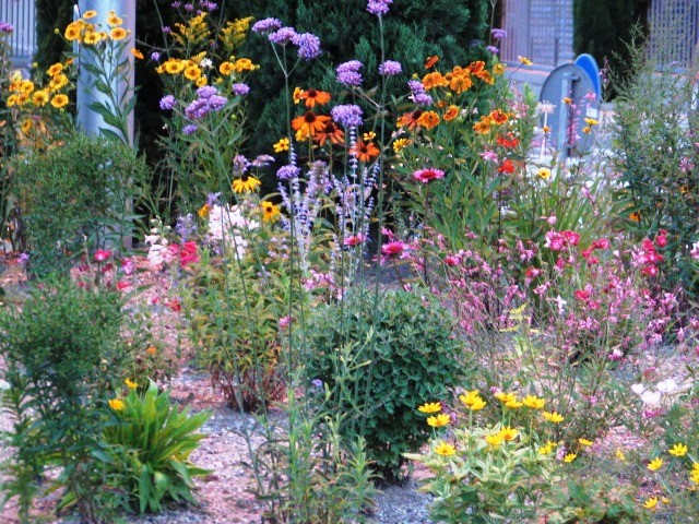 I nostri lavori per creazione giardini aiuole erbacee for Piante e fiori perenni per aiuole