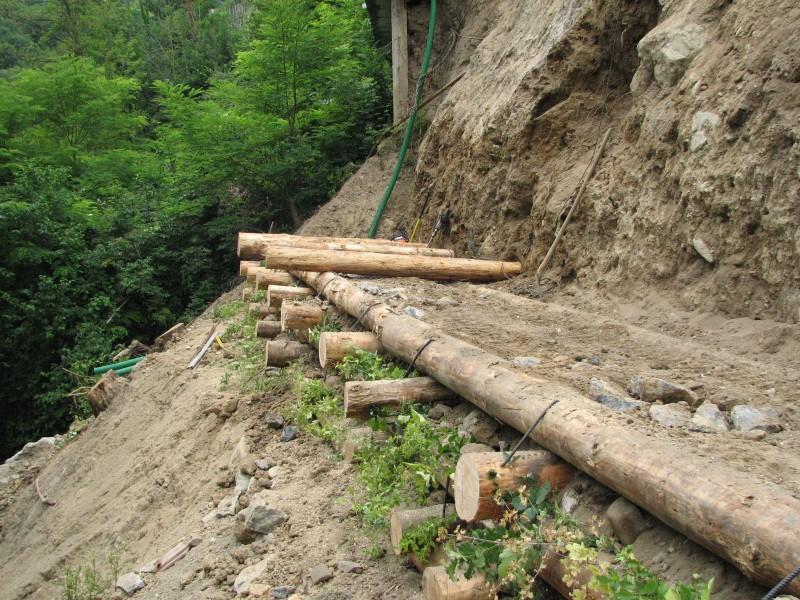 I nostri lavori per ingegneria naturalistica palificate for Consolidare un terreno
