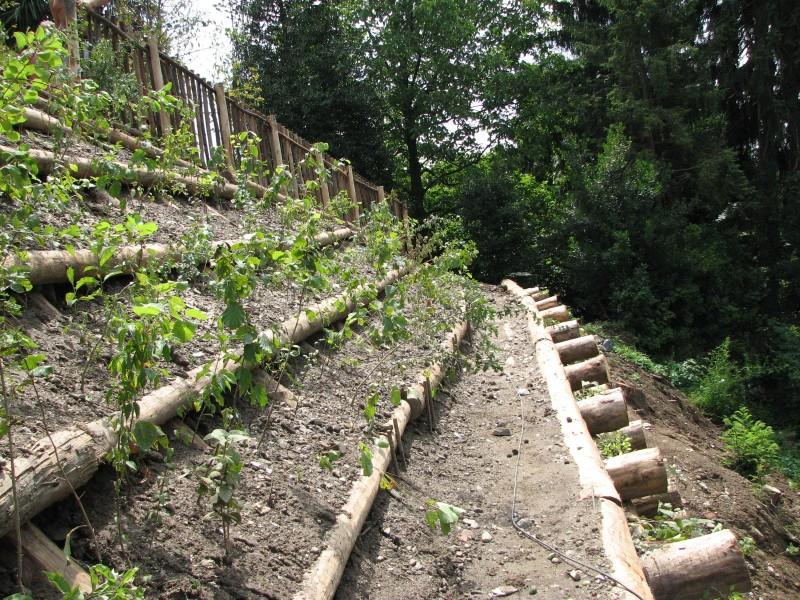 Idee per realizzare zone in pendenza forum giardinaggio - Idee giardino in pendenza ...