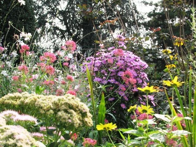 I nostri lavori per creazione giardini aiuole erbacee for Aiuole perenni